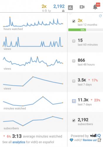 vidIQ statistiques